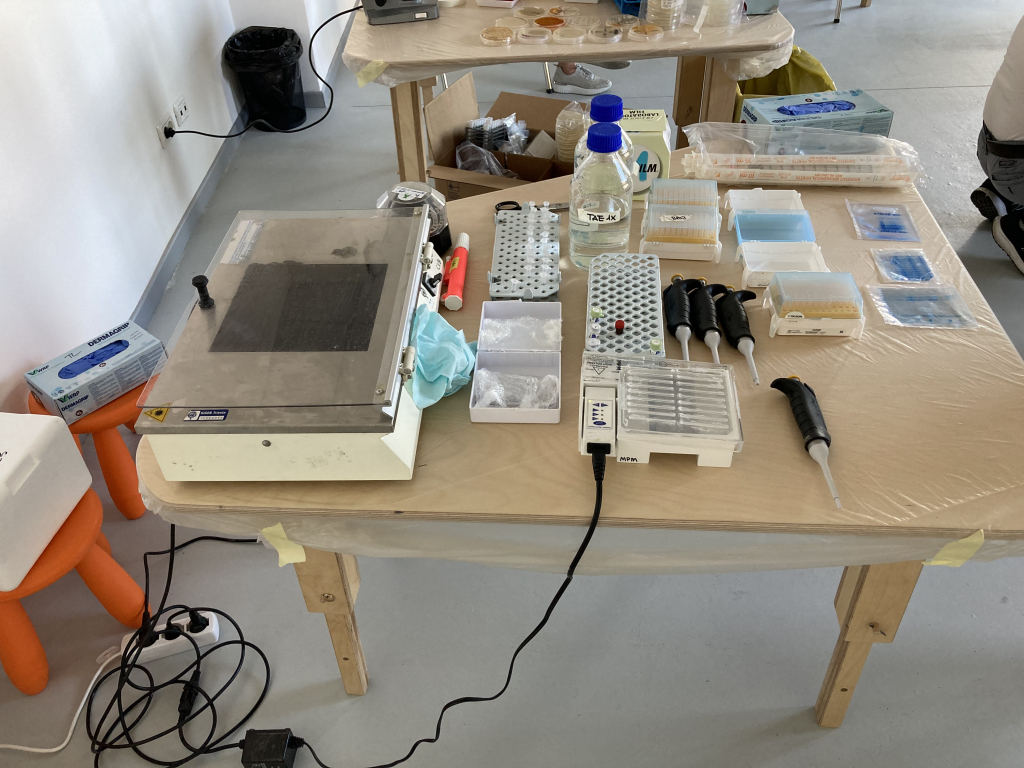 Laboratorio di biologia molecolare | 2 luglio